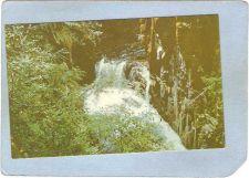Buy CAN Englishman River Falls Postcard Englishman River Falls can_box1~22