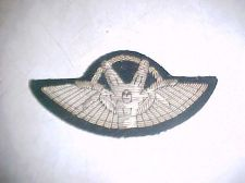 Buy Israel Free Fall Bullion Parachute wing