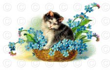 Buy Vintage Victorian Cat Kitten in Flower Basket Greetings Postcard Digital Image
