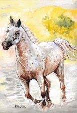Buy Speckled Horse Running