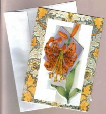 Buy Tiger Lily Greeting Card