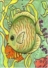 Buy Colorful Fish Get Well Card