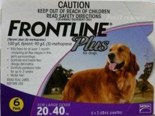 Buy Frontline Plus for Dogs 45-88lbs (20-40kg) New In Box