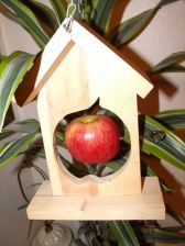 Buy Handcrafted Apple Shape Fruit Bird Feeder