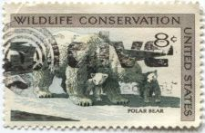 Buy 1971 8c Wildlife Conservation Series Polar Bear Used Stamp Cancelled Y@ctive