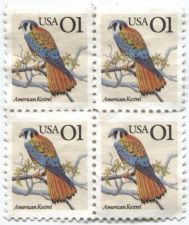 Buy 1995 1c American Kestrel Plate Block Unused Adhesive Nice Color Flora Fauna