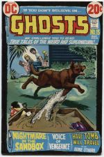 Buy GHOSTS Issue #13 March 1973 Good Condition DC Classic Early Glossy 20c 30512