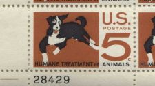 Buy 1966 5c Humane Treatment of Animals Mint, Never Hinged Plate Block Nice Look!