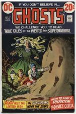Buy GHOSTS Issue #17 Aug. 1973 Near Mint Condition Glossy DC Classic 30512 20c