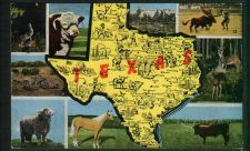 Buy Texas - multi view