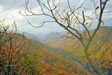 Buy Hiking Through Western North Carolina