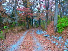 Buy Rural Trip Getaway