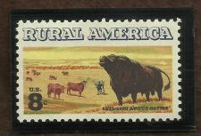 Buy 1973 Angus Cattle Rural America