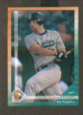 Buy Jason Stokes 2003 Florida State Top Prospect