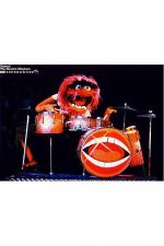 Buy ANIMAL THE MUPPET SHOW POSTER
