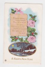 Buy New Year or New Years early 1900's Postcard #51
