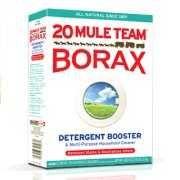 Buy 1/2 lb Borax Sodium Tetraborate All natural, NO additives!