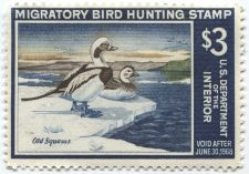 Buy 1967 $3.00 Old Squaws Duck Stamp Unsigned Clean High Catalog Value $100