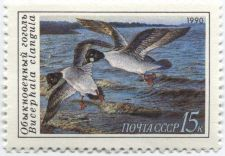 Buy 1990 Russia Duck Conservation Stamp 15k Black Headed Duck