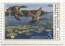 Buy 1990 Russia Duck Conservation Stamp 5k Mallard