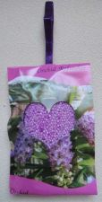 Buy Orchid Refresher ... enjoy a pleasant scent anywhere you wish / Free shipping