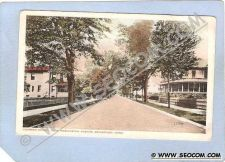 Buy CT Bridgeport Coleman Street From Washington Ave Tree Lined Street Scene c~330