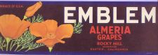 Buy CA Exeter Fruit Crate Label Emblem Almeria Grapes Rocky Hill~4