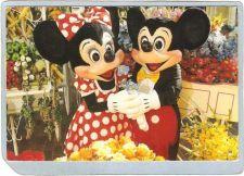 Buy FL Orlando Amusement Park Postcard Walt Disney World Main Street Flower Ma~287
