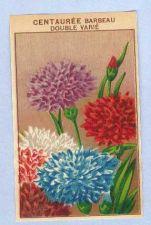 Buy GEN Flower Seed Packet Label Centauree Barbeau Double Varie~9
