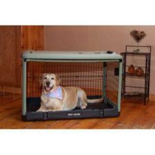 Buy Pet Gear The Other Door Deluxe Steel Dog Crate w/ Bolster Pad Large Sage