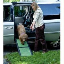 Buy Pet Gear Travel Lite Bi-Fold Half Pet Ramp
