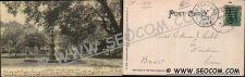 Buy CT New London Postcard Williams Park Undivided Back ct_box4~1811