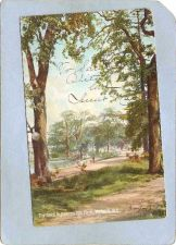Buy CAN Victoria Postcard The Oaks In Beacon Hill Park can_box1~195
