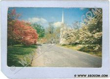 Buy CT Fairfield Dogwood Time On Greenfield Hill ct_box2~730