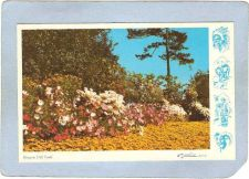 Buy CAN Vancouver Postcard Beacon Hill Park can_box1~112