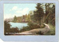 Buy CAN Vancouver Postcard A Drive Stanley Park can_box1~125