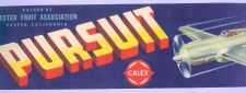 Buy CA Exeter Fruit Crate Label Pursuit Exter Fruit Association Calex symbol l~22