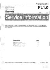 Buy FL 10 2 Service Data by download #132659