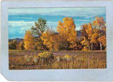 Buy CAN B C Postcard Autumn In British Columbia can_box1~5