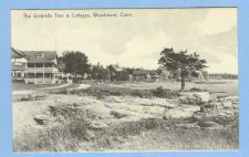 Buy CT Woodmont The Umbrella Tree & Cottages Photo Type View Of Large Old Hous~725
