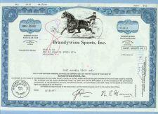 Buy DE na Stock Certificate Company: Brandywine Sports, Inc. ~13