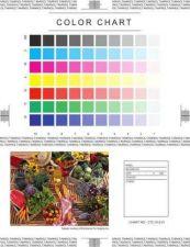 Buy Minolta LETTER-1 CTC-012 Service Schematics by download #137069
