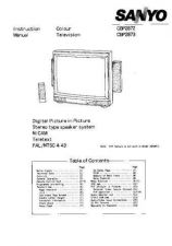 Buy Sanyo CBP2873 Manual by download #172790