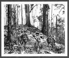 """Buy WWII PRESS PHOTO """"AMERICAL DIVISION ADVANCES ON BOUGAINVILLE"""" 8 1/2 X 7 REPRINT #2"""