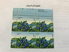 Buy Canada Blueberry block 1992 mnh