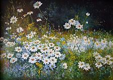Buy White Daisies Meadow Original Oil Painting Palette Knife Landscape Impression Impasto