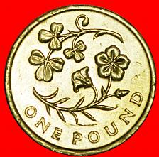 Buy + FLAX SHAMROCK: GREAT BRITAIN★1 POUND 2014 NORTHERN IRELAND! LOW START ★ NO RESE