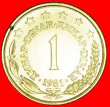 Buy + LARGE TYPE (1973-1981): YUGOSLAVIA ★ 1 DINAR 1981! LOW START ★ NO RESERVE!