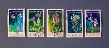 "Buy 1970 Germany (DDR-Era) ""Sea Kale"""