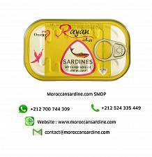 Buy Moroccan Sardines distributors,